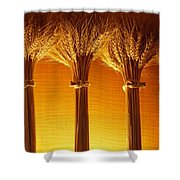 Amber Grains Shower Curtain