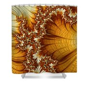 Amber  Shower Curtain by Heidi Smith