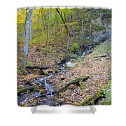 Amber Malanaphy Springs Shower Curtain