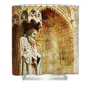 Ameins Cathedral  Shower Curtain