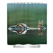 American Alligator And Butterfly Shower Curtain