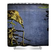 American Bittern With Brush Calligraphy Lingering Mind Shower Curtain