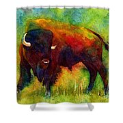 American Buffalo Shower Curtain