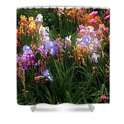 American Giverny Shower Curtain