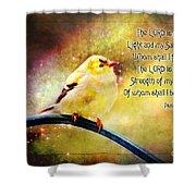 American Goldfinch Gazes Upward  - Series II  Digital Paint With Verse Shower Curtain