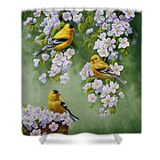 American Goldfinches And Apple Blossoms Shower Curtain