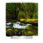 American Jungle Shower Curtain by Chad Dutson