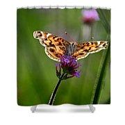 American Lady Butterfly In Garden Shower Curtain