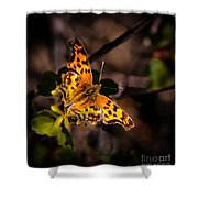 American Lady Shower Curtain by Robert Bales
