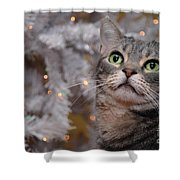 American Shorthair Cat With Holiday Tree Shower Curtain