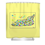 American Sign Language Baby Shower Curtain