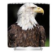American Symbol Shower Curtain