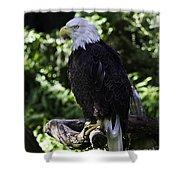 American Symbol One Shower Curtain