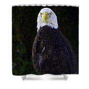 American Symbol Three Shower Curtain