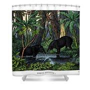 American Tapir Shower Curtain