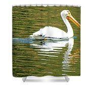 American White Pelican On A Lake Shower Curtain