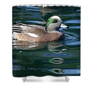 American Widgeon Duck Shower Curtain