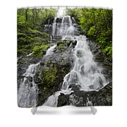 Amicalola Falls Shower Curtain