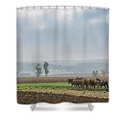 Amish Boy Plowing Shower Curtain
