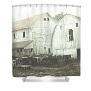 Amish Dairy Shower Curtain