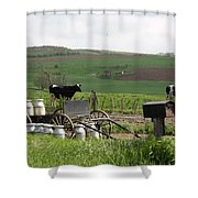 Amish Eggs Shower Curtain