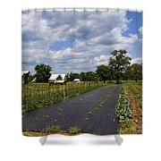 Amish Farm And Garden Shower Curtain