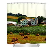Amish Farm On Laundry Day Shower Curtain