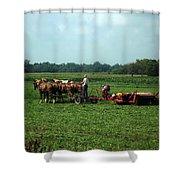 Amish Field Work Shower Curtain