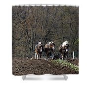 Amish Horses At Work Shower Curtain