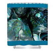 Ammonite Seascape Shower Curtain