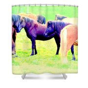 A Horse Most Of All Wanna Be One Among The Other Horses Shower Curtain