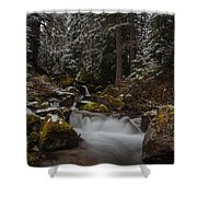 Amongst The Trees And Stones Shower Curtain