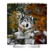 Amongst The Trees Shower Curtain