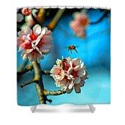 An Almond Pollen Day Shower Curtain