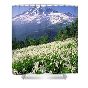 An Alpine Slope Turns White Shower Curtain