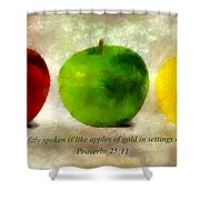 An Apple A Day With Proverbs Shower Curtain