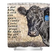 An Apple Or A Rabbit Shower Curtain
