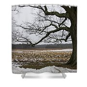 An Appleton Tree And Field In Winter Shower Curtain