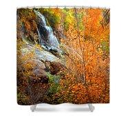 An Autumn Falls Shower Curtain