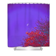 An Autumn Morning Shower Curtain