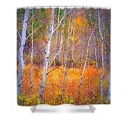 An Autumn Symphony Of Colour Shower Curtain