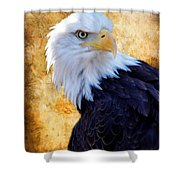 An Eagles Standpoint Shower Curtain