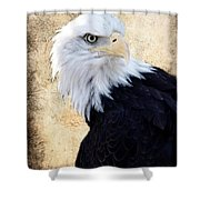 An Eagles Standpoint II Shower Curtain