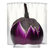 An Eggplant Jewel Shower Curtain