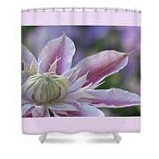 An Exotic Clematis Shower Curtain