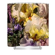 An Iris Surprise Right Shower Curtain