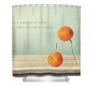 An Orange A Day Shower Curtain