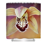 An Orchid Shower Curtain