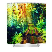 An Uncertain Path Shower Curtain