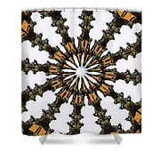 Ananasi Mandala Shower Curtain